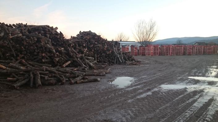 Proizvodnja bukovih drv